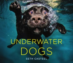 SCasteel Underwater Dogs book